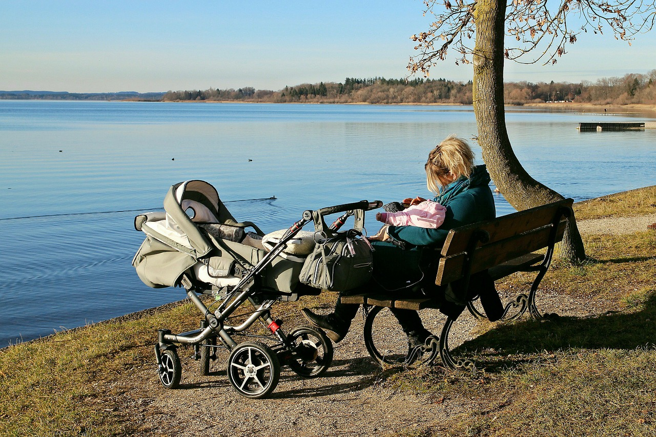 Las 5 mejores sillas de paseo para bebé de 2020